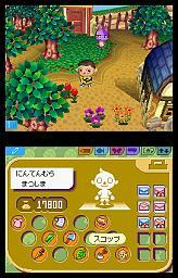 Animal Crossing Forum - Portail Animal_crossing_ds_20041001